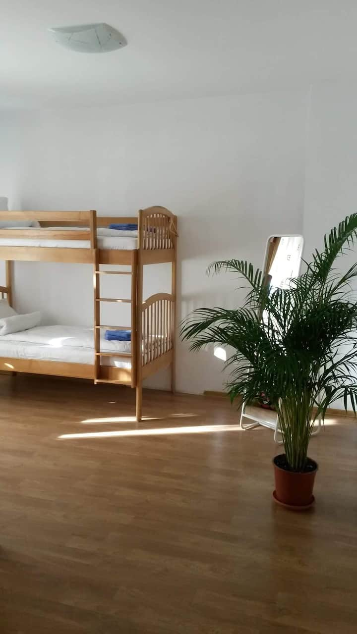 Hostel ANDREI