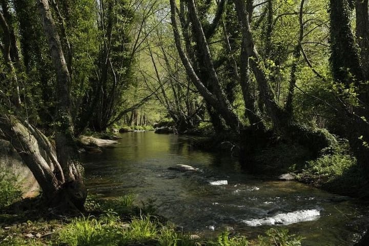 Nature Lovers Paradise In Quiet Retreat Marvao