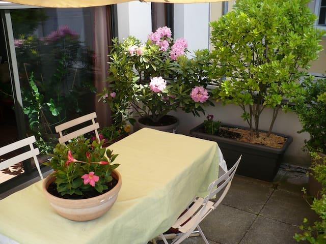 Les terrasses fleuries du Zola Kahn