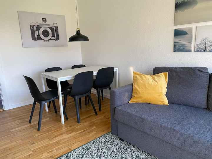 T29bst, 3 bedroom apartment in suburb to Cph
