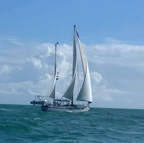 Adventure like a cruiser, Sail to Utopia in PR!!