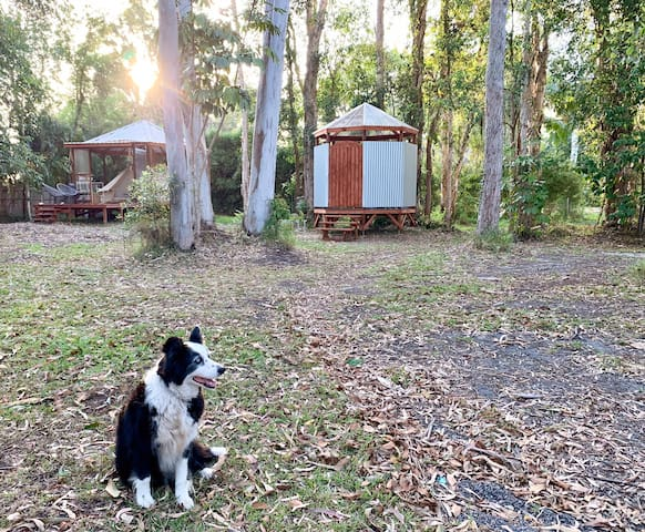 Noosa Lakeside Glamping - in a bell tent
