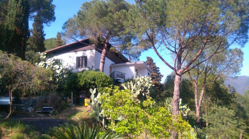 Belle villa sur les hauteurs de Levanto - Levanto - Villa
