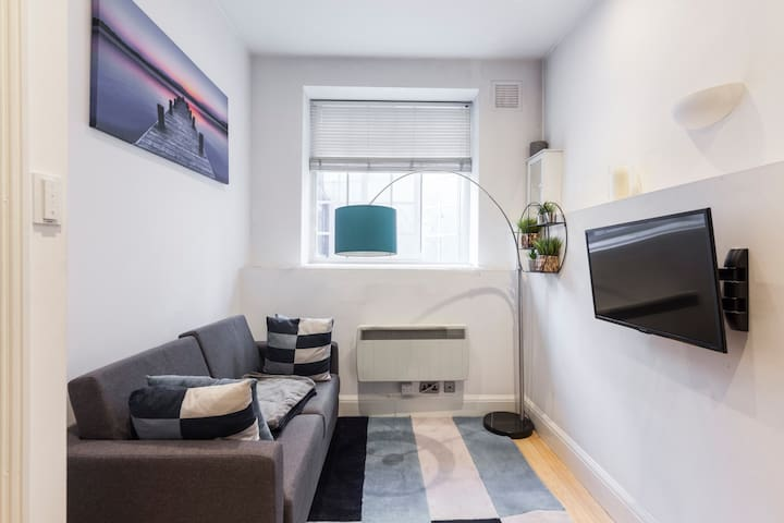 CLEAN AND COSY CENTRAL LONDON ONE BED APARTMENT