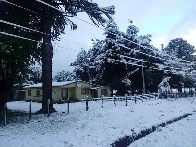 Kingo-Camp Hostal&Camping