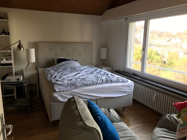 1 Room apartment 10 min from city - Kilchberg - Appartamento