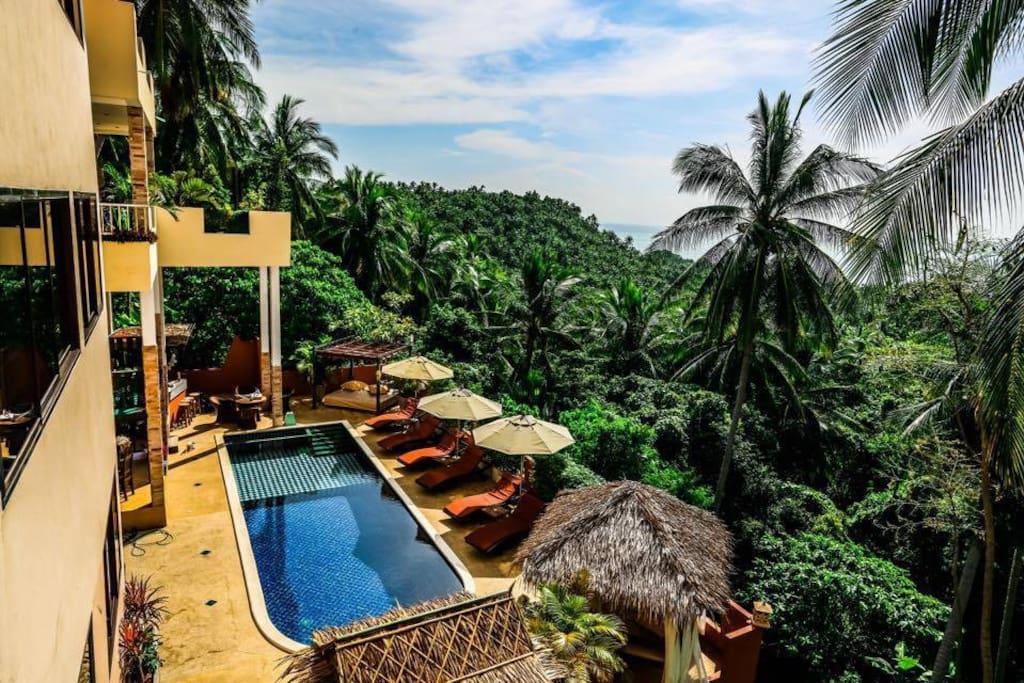 Pool & Surrounding Jungle View