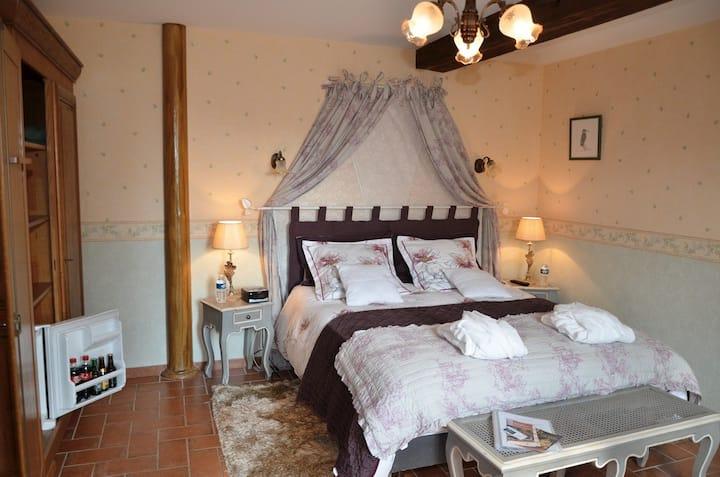 Le Moulin de Gouaix - Chambre du Martin Pêcheur