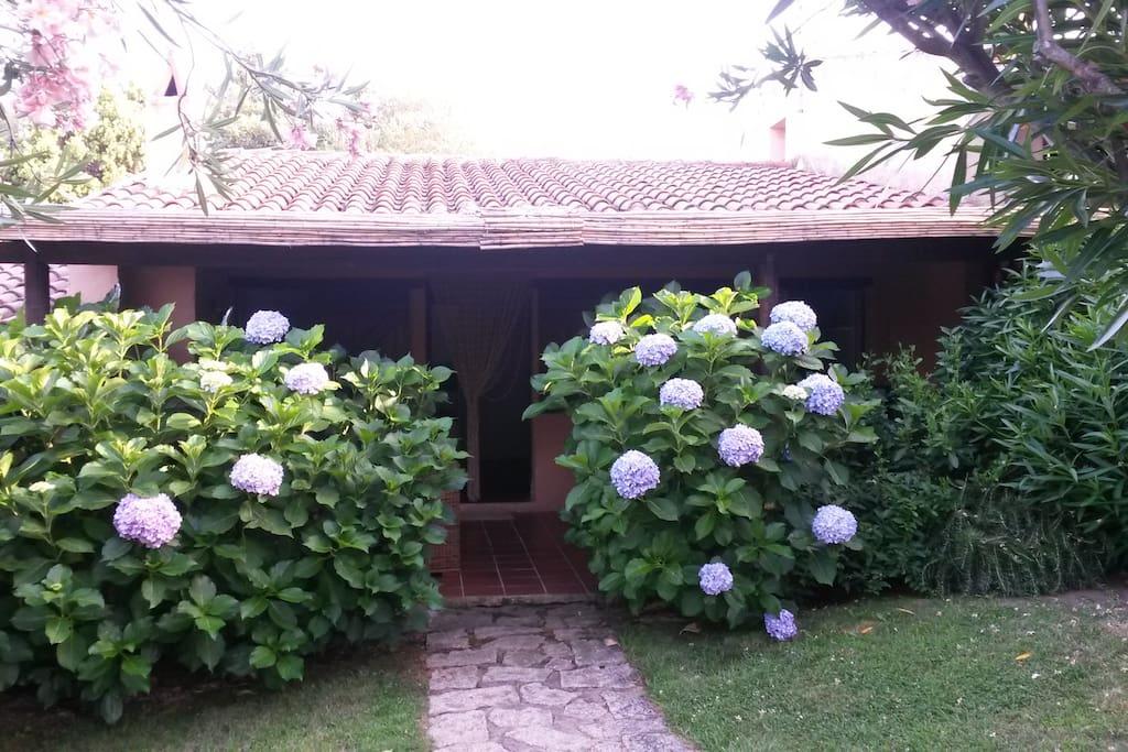 Entrata dal giardino