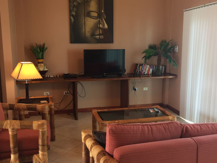 Comfortable Living Room and a nice TV to watch your favorite shows (US cable included)