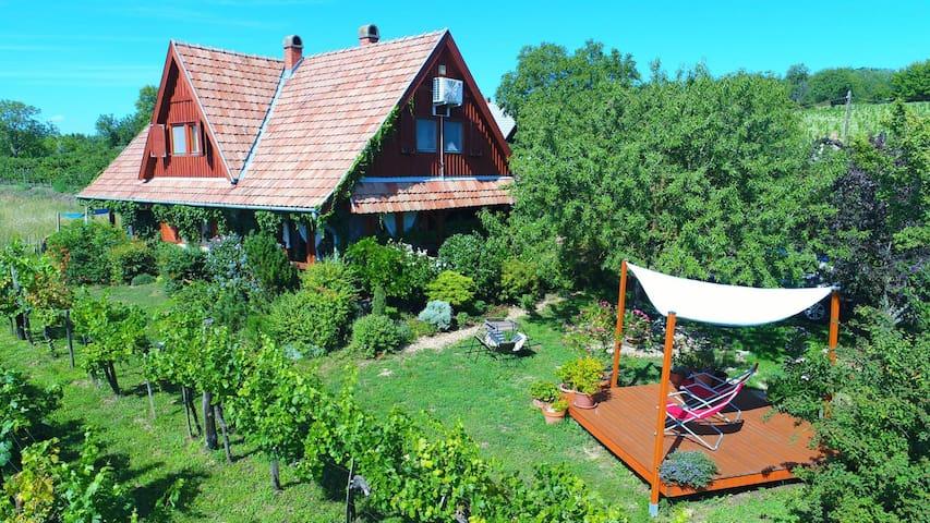 Balatonföldvár-Kőröshegy-Borochegy