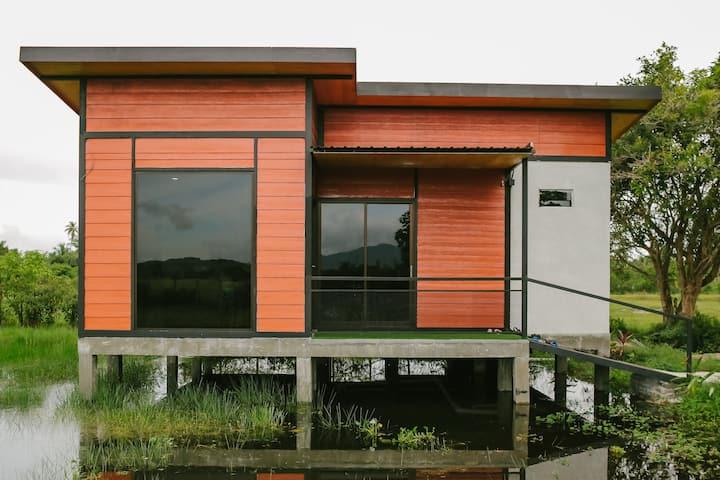 Langkawi green view cottage