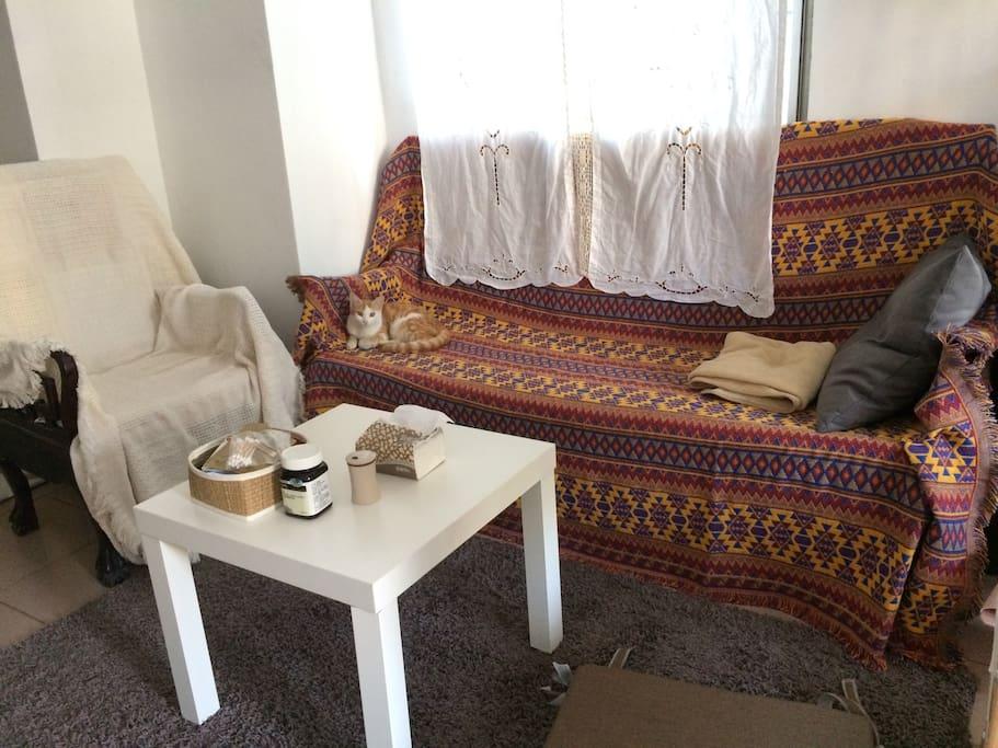 客厅的沙发,也是出租的那张