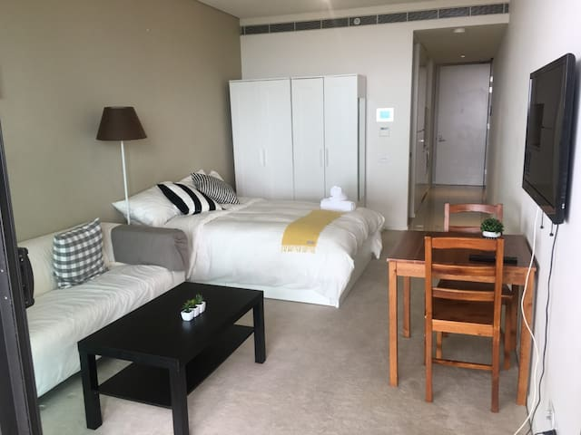 LUXURY CBD FLAT ONLY 5MINS WALK TO CENTRAL STATION - Chippendale - Apartment