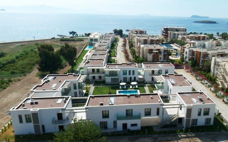 Beachfront 3 Bedroom Apartment at Front of Pool