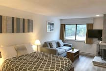 Open concept studio with a new queen bed, secondary queen fold out mattress, wood fireplace, and newly renovated floors.
