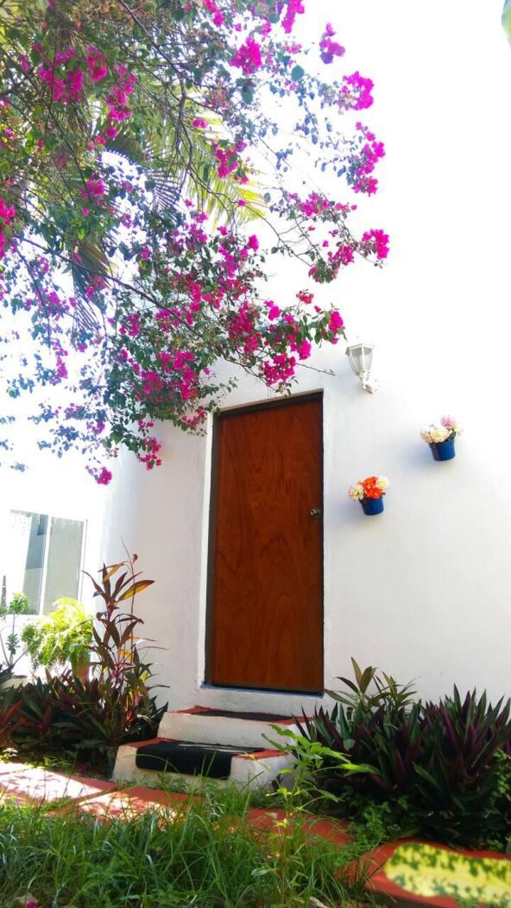 Departamentos Amueblados Mazatlan