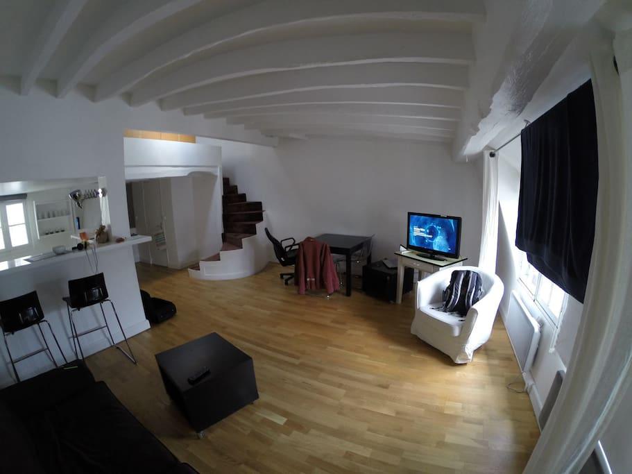 Salon avec sofa lit. Living room with the
