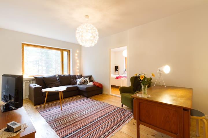 A vintage gem near city centre - Rovaniemi - Apartment