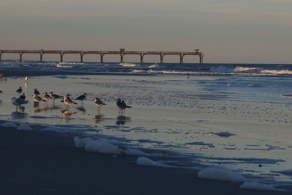 Jacksonville Beach Pier - Just a few blocks away!