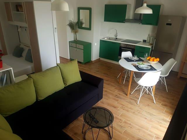 Studio apartment Olive Green Mljet