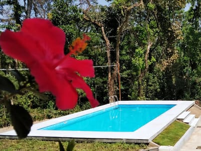 Room in Villa with swimming Pool Kalyan Cool 5 Chikmagalur