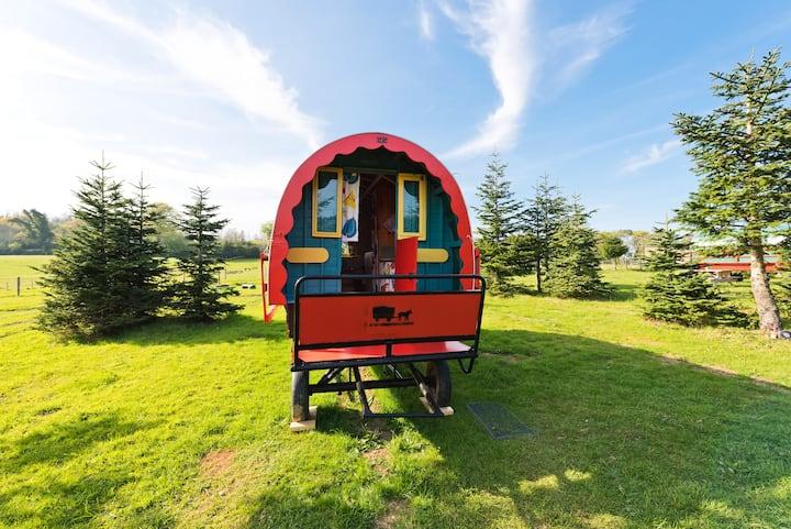 Rustic Gypsy Caravan - BLUEBELL Clara