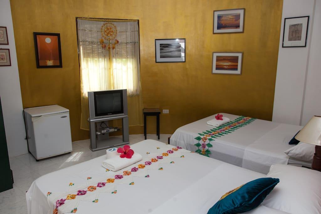 Indoor view of the room (2)