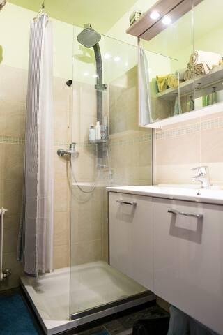 Badezimmer mit Dusche, WC ist separat