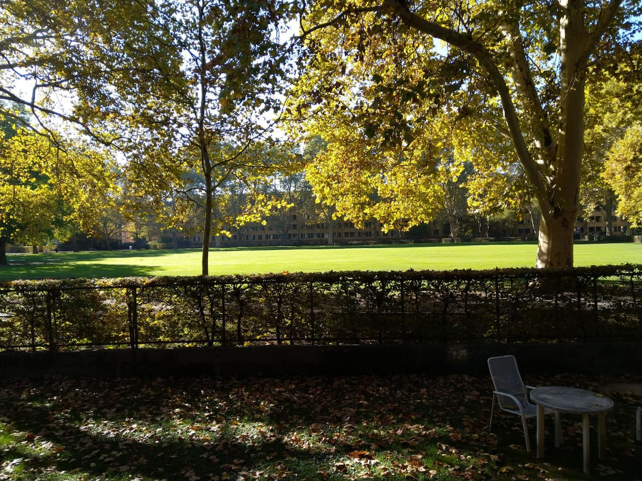 Die Wohung liegt direkt am Bullingerhof, dem grössten, grünsten und schönsten Innenhof Zürichs
