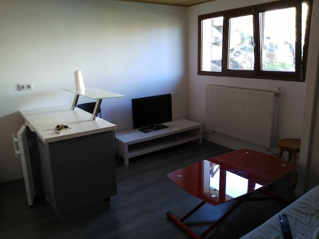 Appartement confortable, plein centre - Huez - Apartment