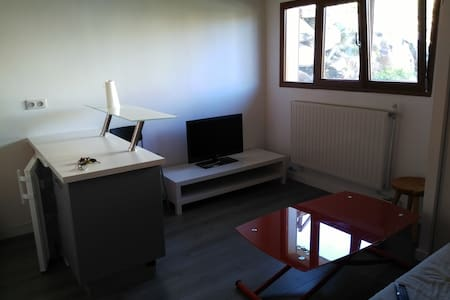 Appartement confortable, plein centre - Huez
