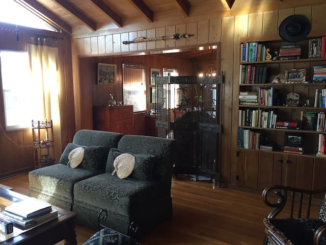 Living room with lots of books
