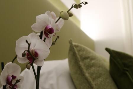 Casa Ercoli 29 - MODERN APARTMENT  LUXURY BEDS