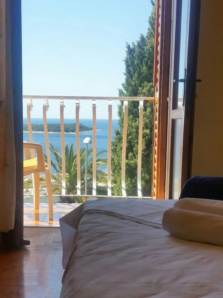 Beautiful seaview room