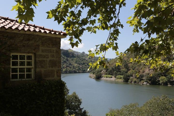 House of Figueira Velha | Resende | Douro