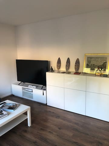 2 ½ Rooms Apartment Sublet July-December 2019