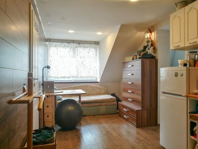 Lednice útulný byt