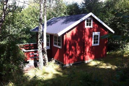 Hytte i 3 hektar egen skov, som hører til huset :) - Åsljunga
