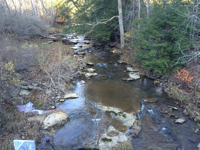 Turkey Run trout stream -- just steps away from the cabin.