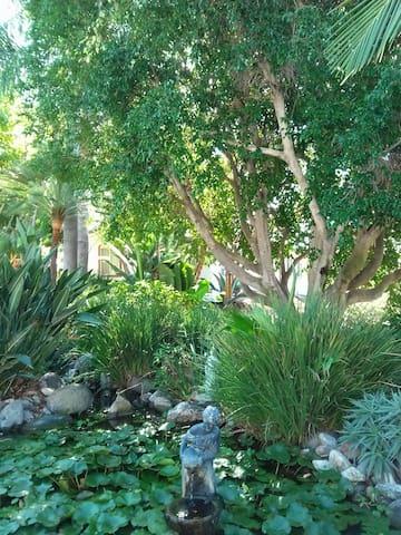 Casita in quiet foothill grove! - Fallbrook - Domek parterowy