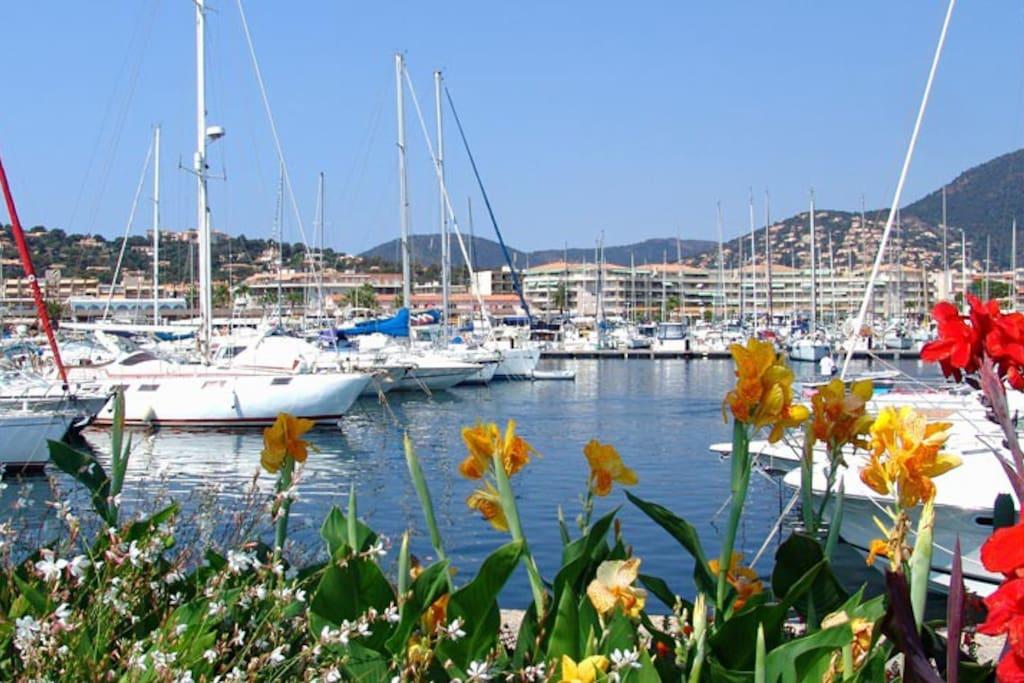Le port de Cavalaire sur mer