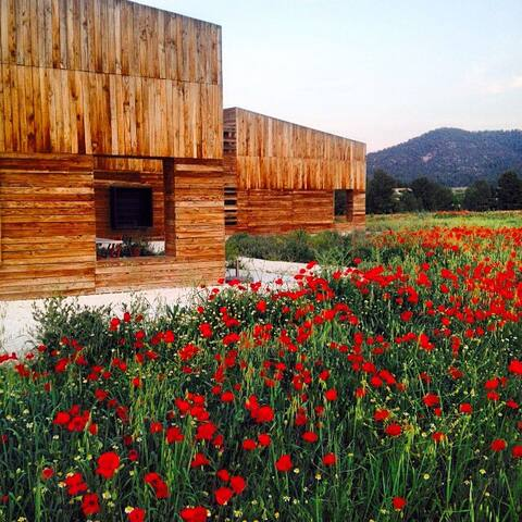 Design house in the countryside - Bullas - Talo