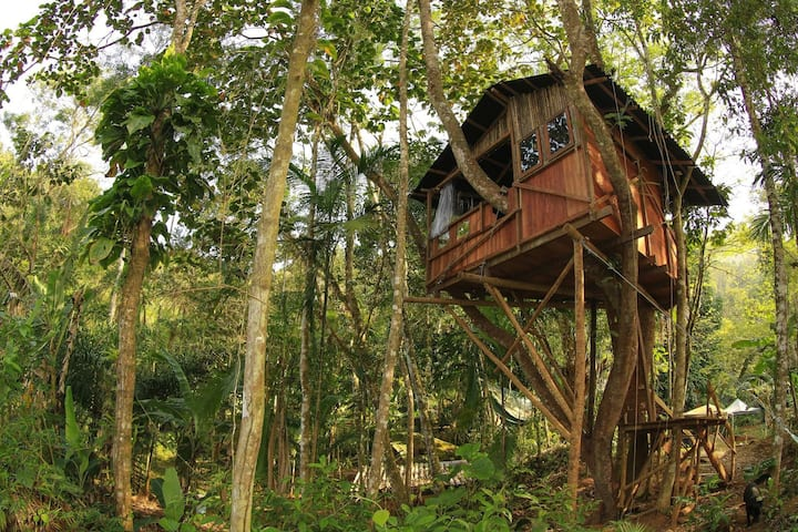 Casa na Árvore - Sítio Simple Life, Itamambuca