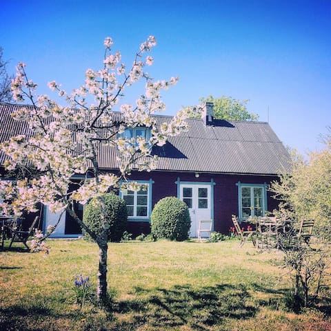 Gårdshus med trädgård (2)