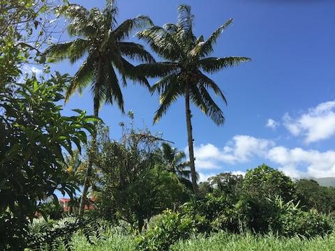 Logement en pleine verdure tropicale -10 min plage