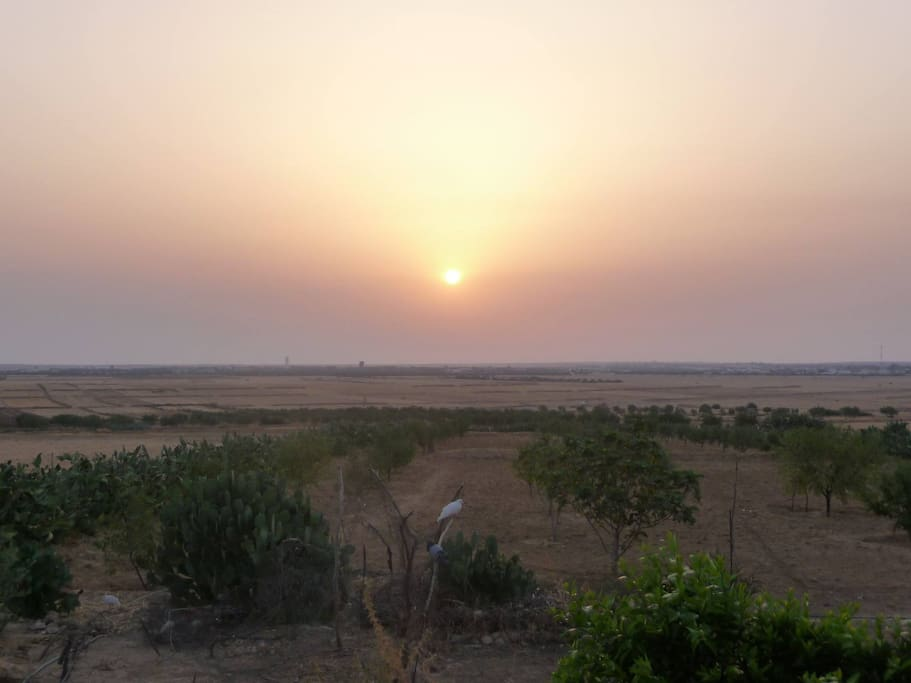 Sunrise  view from Dar Taieb (view from the veranda )