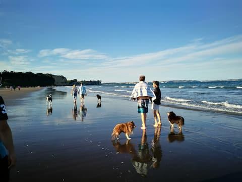 距离最近的Longbay海滩
