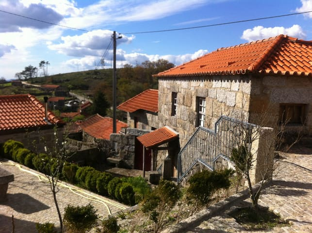 Lovely country house in Douro