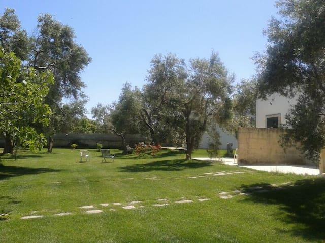 Salento, San Foca, Casa vacanze mare e ulivi